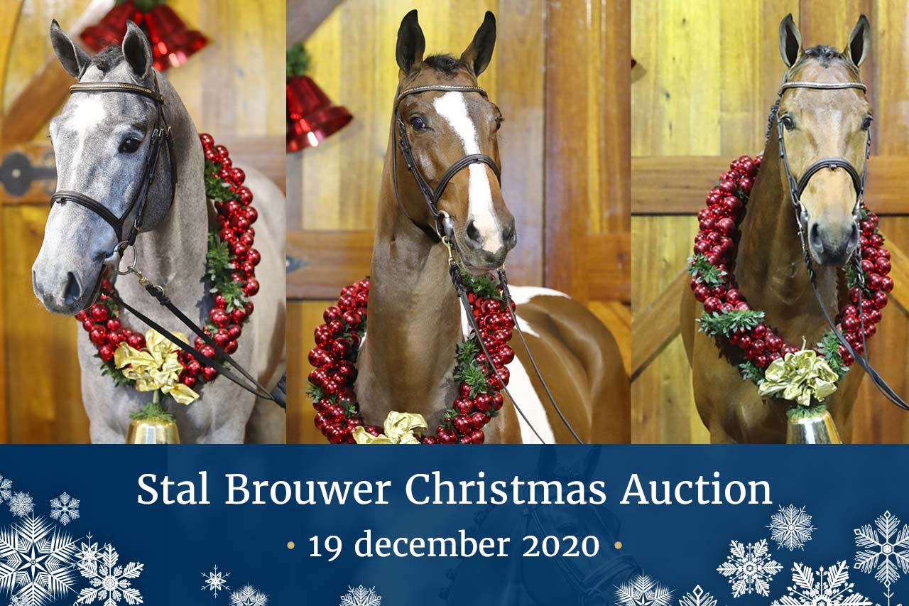 Stal Brouwer Christmas Auction
